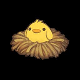 hairacc_2_chick